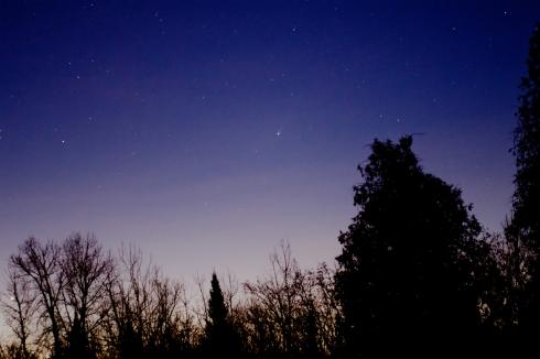 My photo of Comet ISON